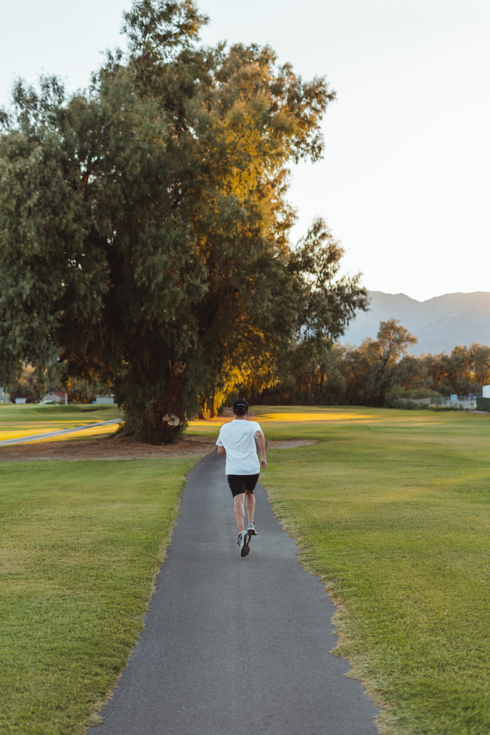 parks for health and wellbeing